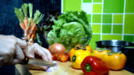 Woman's hands slicing onion, variety vegetable in kitchen/ activity & lifestyle conceptual