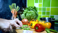Woman's hands slicing vegetable in kitchen/ activity & lifestyle conceptual