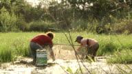 MS Women fishing baits with net / Mato Grosso do Sul, Brazil