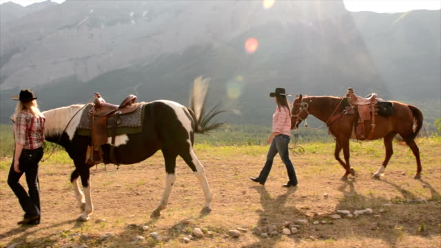Women leads horses across mountain meadow