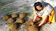 Women making fresh buffalo dung cakes