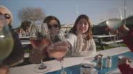 4 women toasting with a glass of wine, at Mornington Peninsula, POV