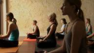 A women's yoga class