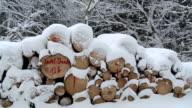 MS PAN Wood log cover with snow layers in winter / Saarburg, Rhineland-Palatinate, Germany