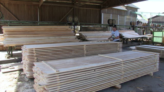 MS Wood plank production at saw mill / Schweich, Rhineland Palatinate, Germany
