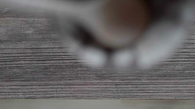 de daling van de houten lepel