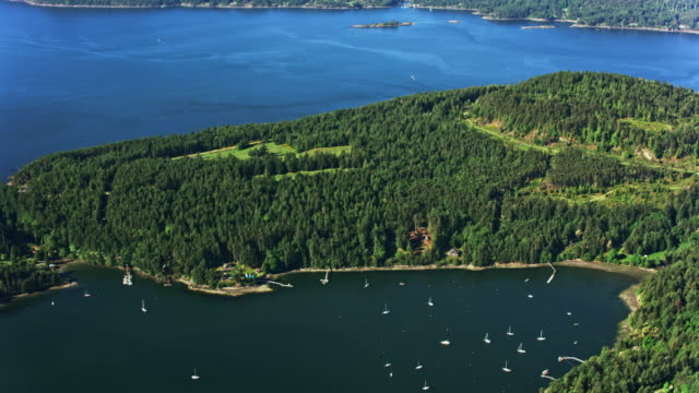 AERIAL Wooded coastline and sailboats anchored in the bay