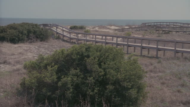 PAN Wooden walkway leading from the beach to oceanfront homes / Tybee Island, Georgia, United States