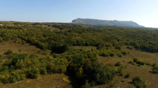 AERIAL: Woodland on mountain plateau