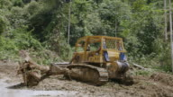 MS ZO Worker moving felled rainforest trees / Tawau, Sabah, Malaysia