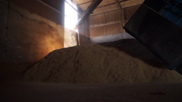A worker prepares to unload a truck carrying rice husk the Fenirol SA biomass plant in Tacuarembo Uruguay on Feb 10 2016 Renewable sources of energy...