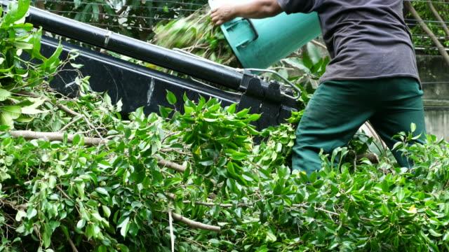 worker throwing litter in waste truck