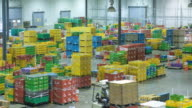 WS T/L Workers arranging containers in distribution warehouse using forklift / Auckland, New Zealand.