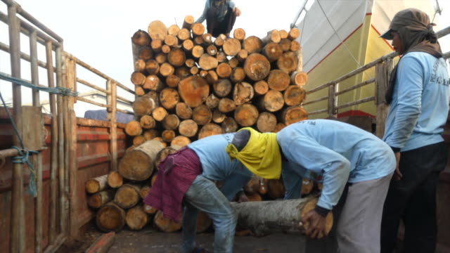 Workers piling logs on a truck in an indonesian port