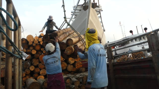 Workers unloading logs from a boat in Indonesia