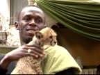 World and Olympic sprint champion Usain Bolt has come facetoface with his match for speed in the animal world a cheetah Nairobil Kenya