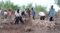 World Food Programme Executive director Ertharin Cousin visited the Malawi village of Mangochi on Saturday inside one of the districts heavily...