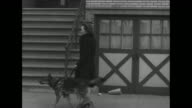 World War II / US home front / blind woman with seeingeye dog leaves house and walks down street / blind men and women along with sighted people...