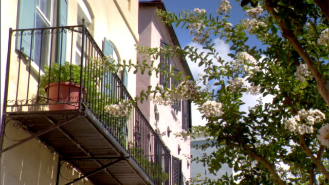 HD Wrought iron balcony w/ potted plants attached to pastel painted restored building next to flowering in bloom ornamental tree