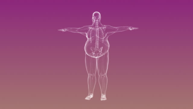 X-ray of Overweight Man with Skeleton | Loopable