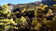 Yading Nature Reserve