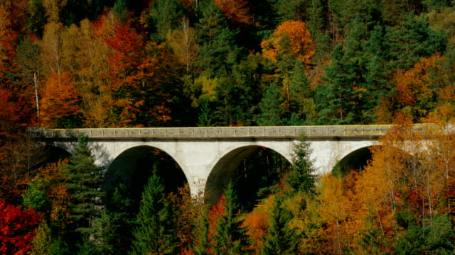 Yellow car moving on arch bridge through autumn forest