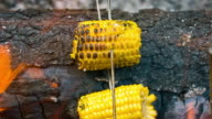 Yellow Corn by the campfire