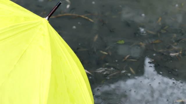 Yellow umbrella in  pool
