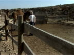 Yonni Sharir can talk to camels and his unique way of taming and training these resilient animals in the remote Negev desert of southern Israel has...