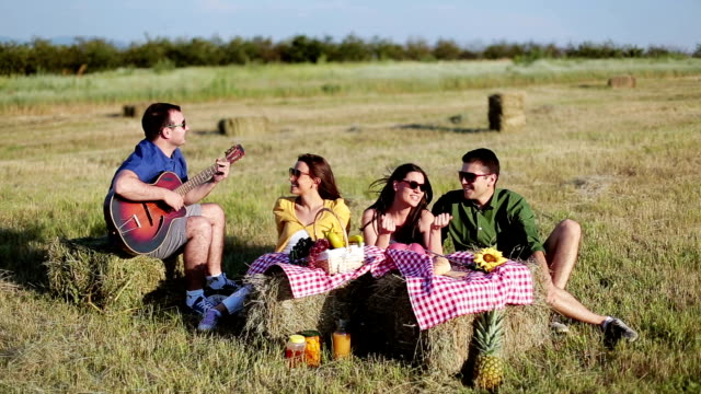 Young adults having fun on a picnic