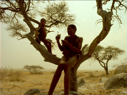 Young boy approaches Basarwa tribesman and child sitting in bough of tree