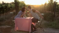 Young couple at table in field, kissing and sharing wine