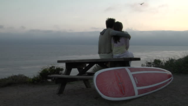 WS, Young couple sitting on picnic table, facing ocean at sunset, rear view, Los Angeles, California, USA