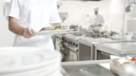 Young female chef presenting food