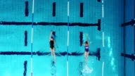 Young female swimmers in the pool
