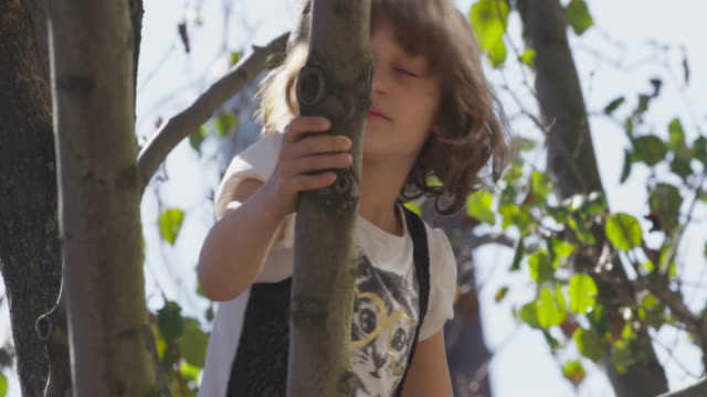 Young girl climbs tree and looks into camera.