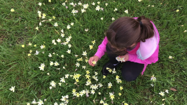 Young girl in a field of fresh flowers