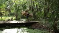 PAN Young girl in cardboard aeroplane running over bridge in woods, dressed as pilot.