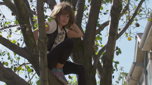 Young girl in tree looks at camera with serious expression.
