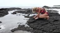 MS Young girl playing on rocky shoreline / Kauai, Hawaii, United States
