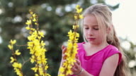 MS Young girl playing with yellow flowers outdoors / Santa Fe, New Mexico, United States