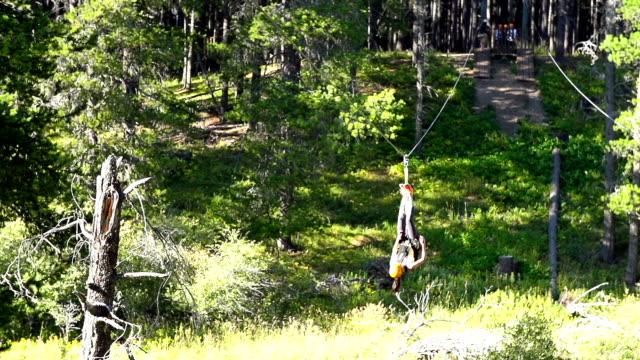 Young girl riding zip line across ravine upside down