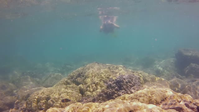 Young girl snorkeling over a shallow reef taking pictures