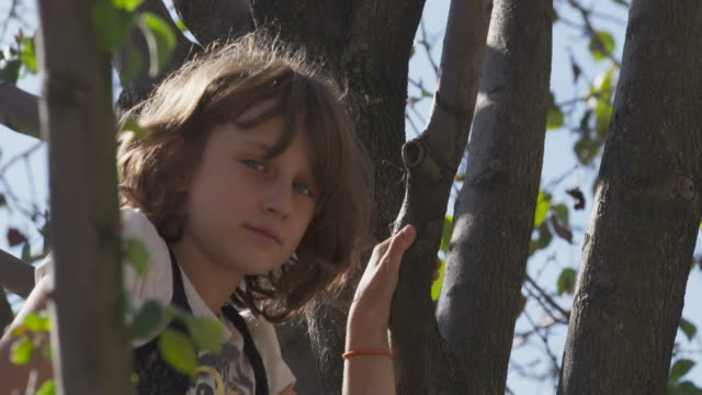 Young girl with sad expression hiding in tree.