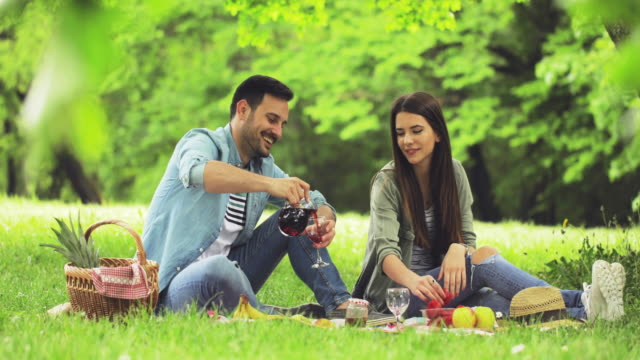 Young happy couple drinking red wine on a picnic at the park.