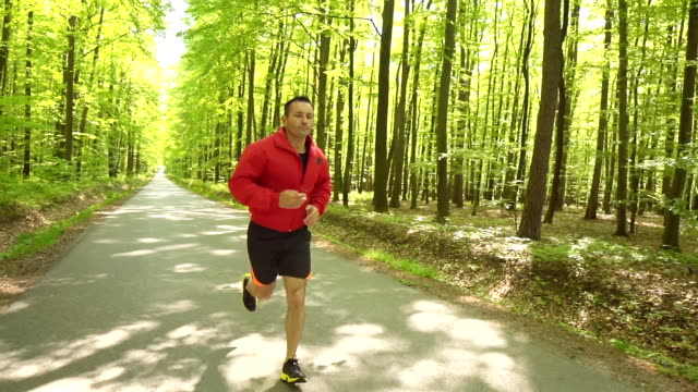 HD STEADY: Young Man Jogging In The Forest