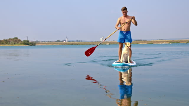 Young man paddleboarding with his dog