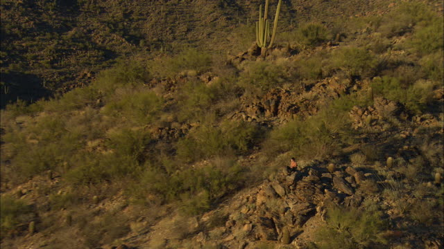 AERIAL ZO Young man sitting on rocky saguaro cactus covered hill, Tucson, Arizona, USA