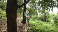 Young man using GPRS in a mobile phone in a forest, Malshej Ghat, Maharashtra, India
