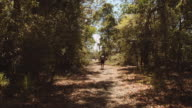 A young man walking in the forest, at Evans Head, New South Wales, Australia